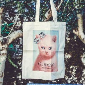 Rendez vous à Toulouse avec Gemmyo