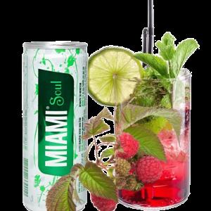 Miami Soul : l'unique boisson revitalisante naturelle