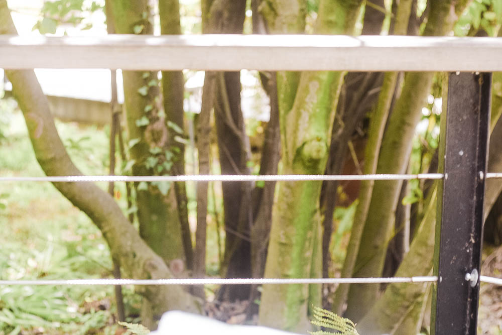 restaurant-gastronomique-toulouse-le-moai-toulouse-visitez-toulouse-tourisme-museum-toulouse-blog-lifestyle-famille